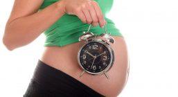 Календарь беременности по неделям. Рассчитать дату родов и пол ребенка