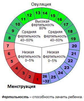 лютеиновая фаза какой день цикла
