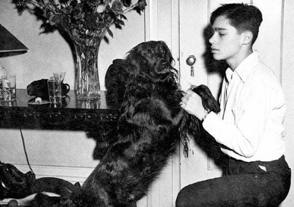 Маленький Владимир Познер с любимой собакой