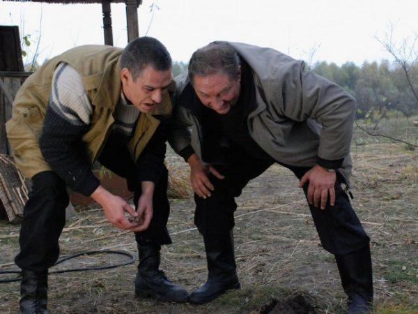 """Кадры из фильма """"Дело было на Кубани"""""""