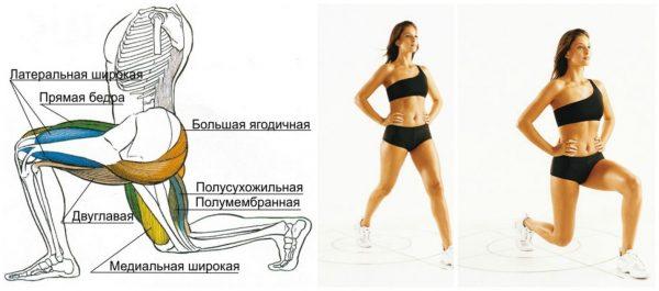 Упражнения на ягодицах