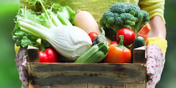Раздельное питание для похудения: таблица, меню на неделю