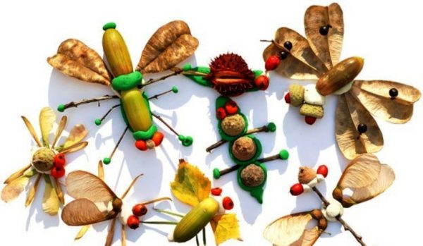 Поделки из природного материала своими руками в школу и в детский сад: фото