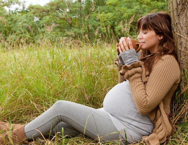 Цикорий можно употреблять даже во время беременности
