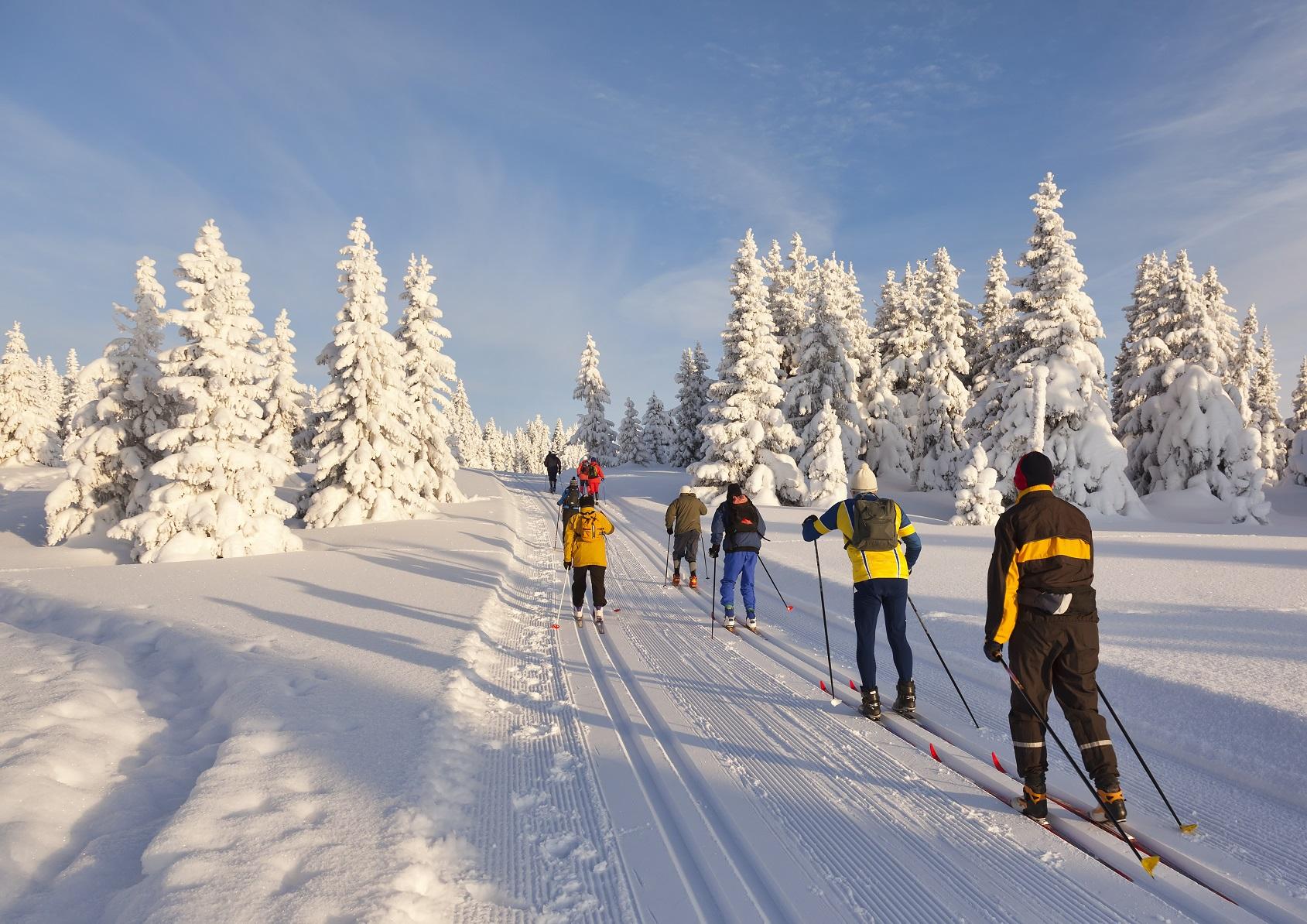 Зимние прогулки, что может быть лучше, как для здоровья, так и для фигуры