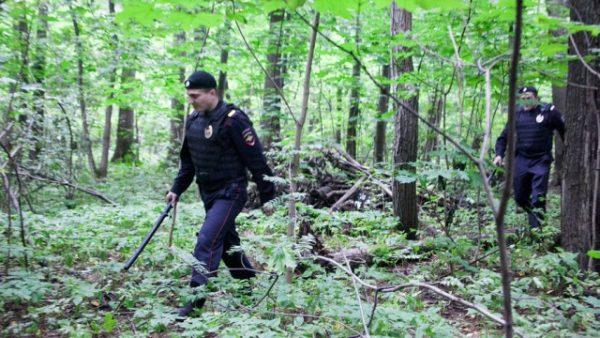 В Битцевском парке было найдено три обезображенных трупа