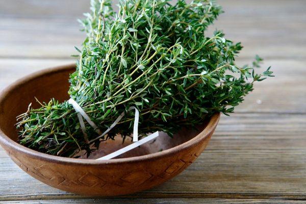 Растение является прекрасным средством от простуды