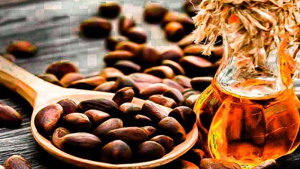 Настойку из кедровых орехов можно приготовить в домашних условиях