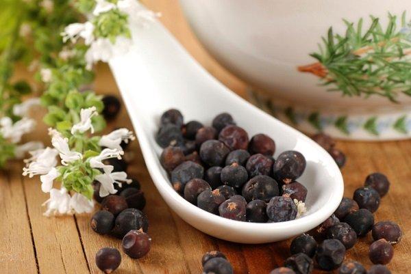 Высушенные ягоды растения
