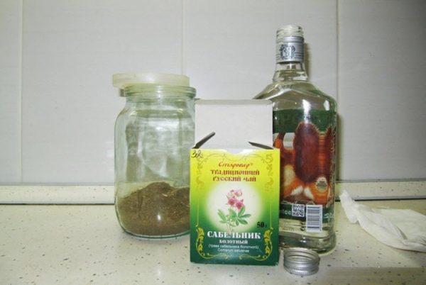 Сабельник болотный: полезные свойства и противопоказания, описание, рецепты