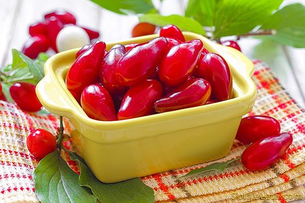 Кизил: польза и вред для организма, применение ягод кизила