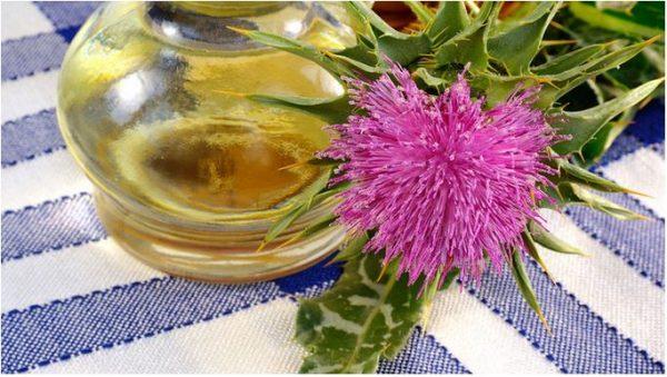 Полезный состав масла расторопши