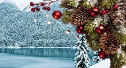 Новогодние каникулы в Абхазии