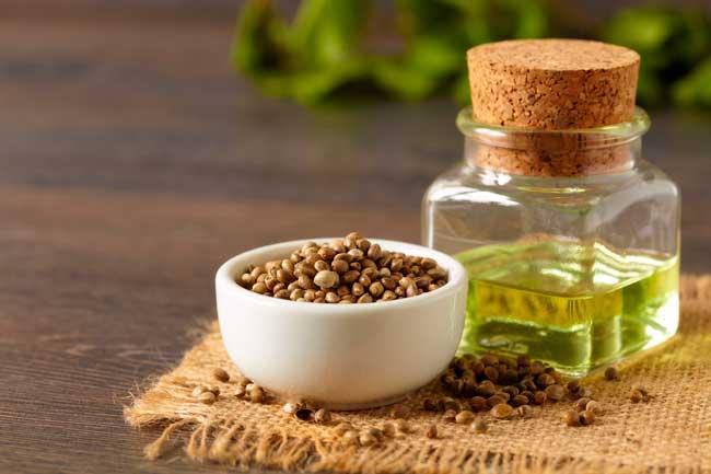 Применяется масло в лечебных целях