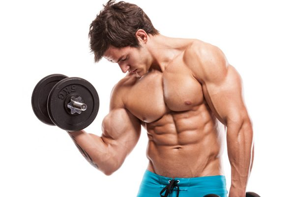 Маралий корень поможет спортсменам наращивать мышечную массу