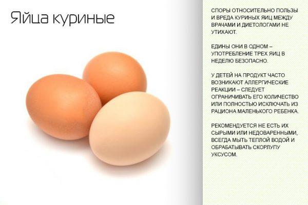 Меры предосторожности при употреблении яиц