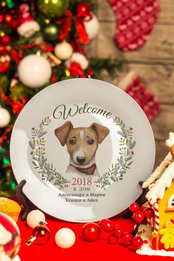 Собака на тарелке