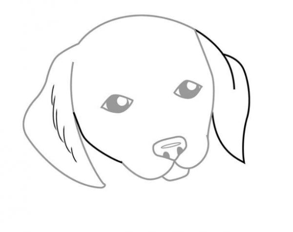 Как нарисовать сидящую собаку - фото 6