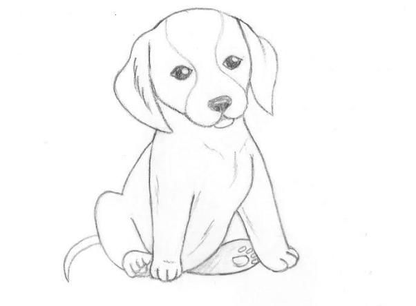 Как нарисовать сидящую собаку - фото 1