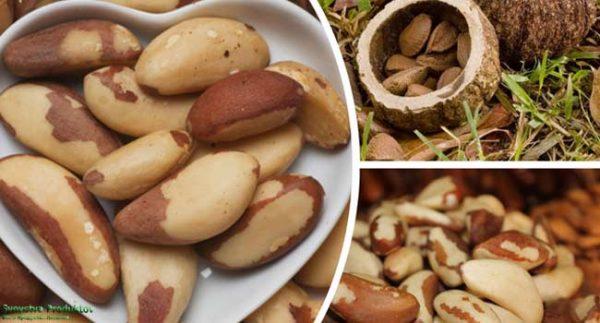 В составе бразильских орехов содержится большое количество витаминов