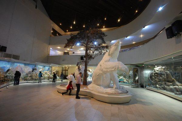 Государственный Музей Дарвина