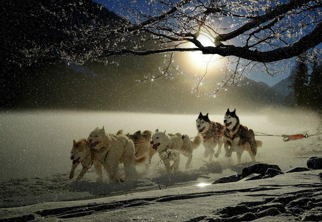 Новый год в Карелии: настоящий зимний праздник
