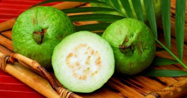 Плоды этого растения могут вызвать аллергию