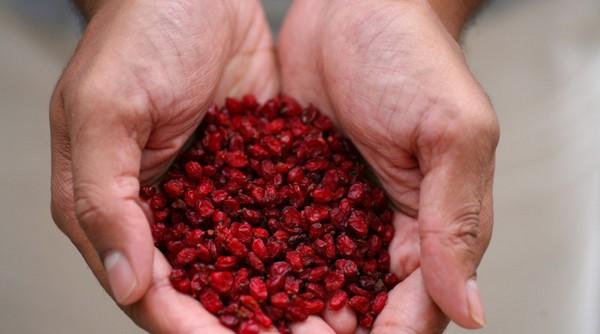 Сухие плоды барбариса