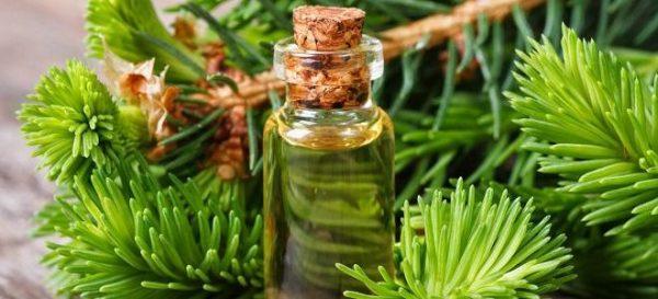 Кедровое масло можно применять в детском возрасте