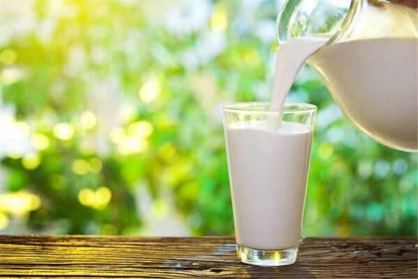 В этом молочном продукте содержится большое количество витаминов