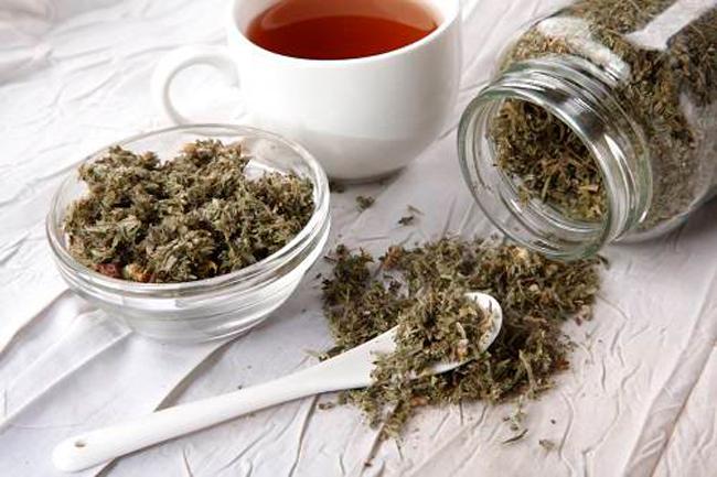 Курильский чай обладает мочегонным действием