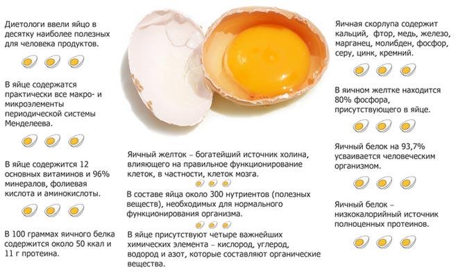 Свойства куриного яйца