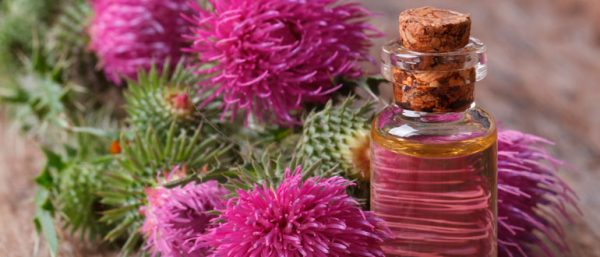 Масло расторопши помогает в лечении женских заболеваний