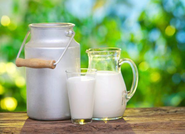 Козье молоко прекрасный иммунномодулятор
