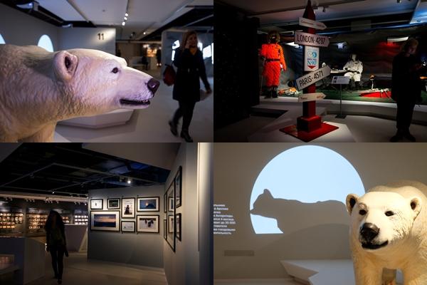 Арктическая выставка