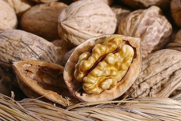 Грецкие орехи помогают лечить потенцию