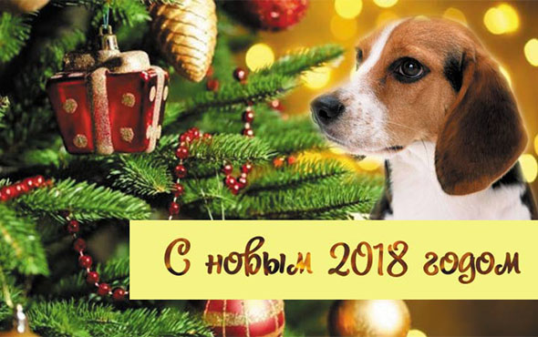 pozdravleniya-s-novym-2018-godom-sobaki-