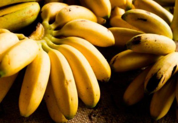 Существуют разные сорта бананов