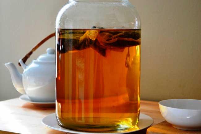 Чайный гриб синтезирует специфический антибиотик (медузин)