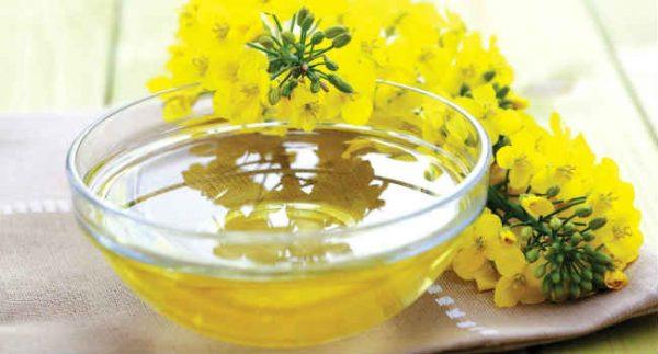 Специалисты не рекомендуют давать масло рыжика в период лактации и кормления грудью