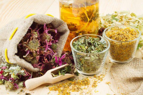 Лекарственные травы для лечения панкреатита