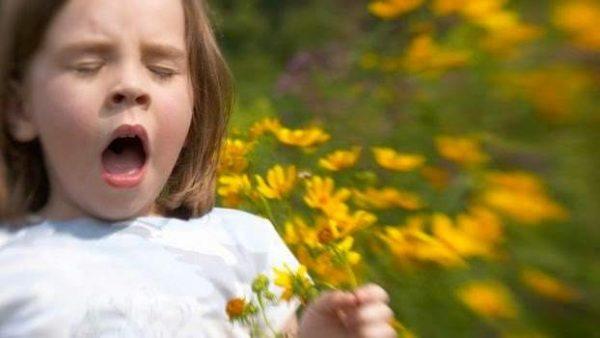 Чем отличается аллергический кашель от обычного