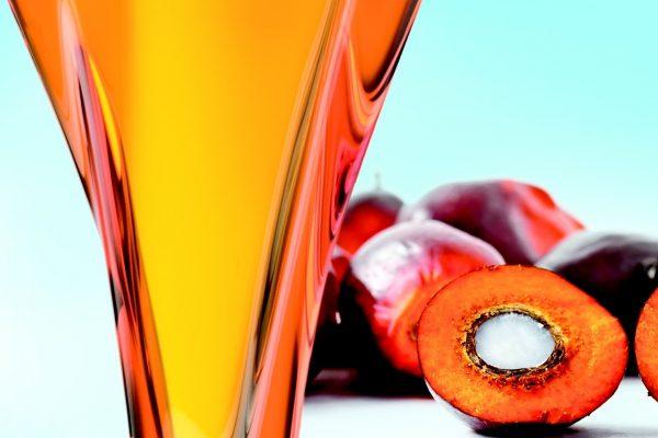 Пальмовое масло применяется в косметологии