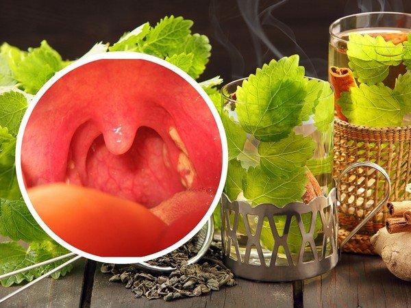 Лечение аденоидов народными средствами