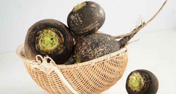 Из-за низкой калорийность черную редьку можно есть во время похудения