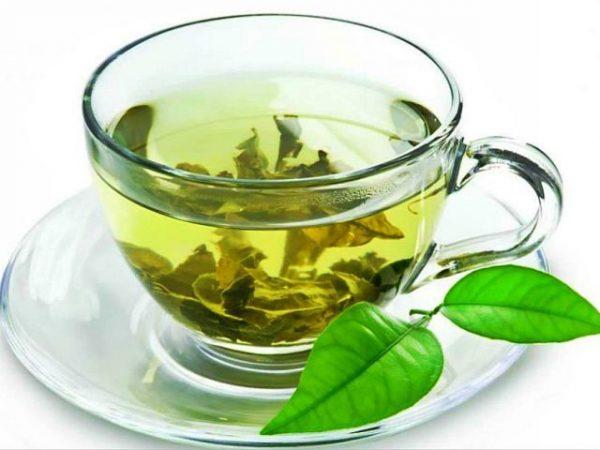 Зеленый чай нужно научиться правильно заваривать