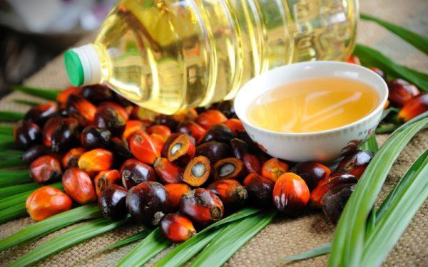 Пальмовое масло можно встретить в детских смесях