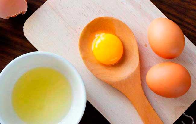Куриные яйца - полезный продукт питания