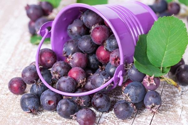 В ягоде содержится большое количество витамина С