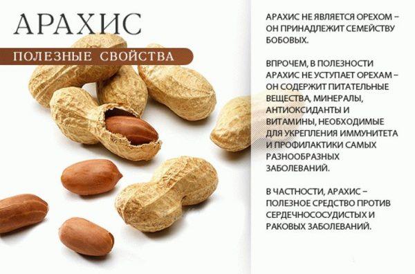 В чем заключается польза арахиса